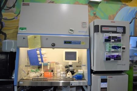 SafariStem Cell Laboratory