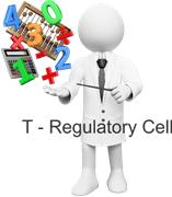 T-Regulatory Cell
