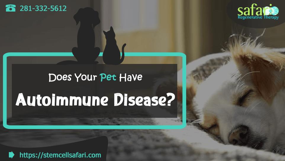 does-your-pet-have-autoimmune-disease