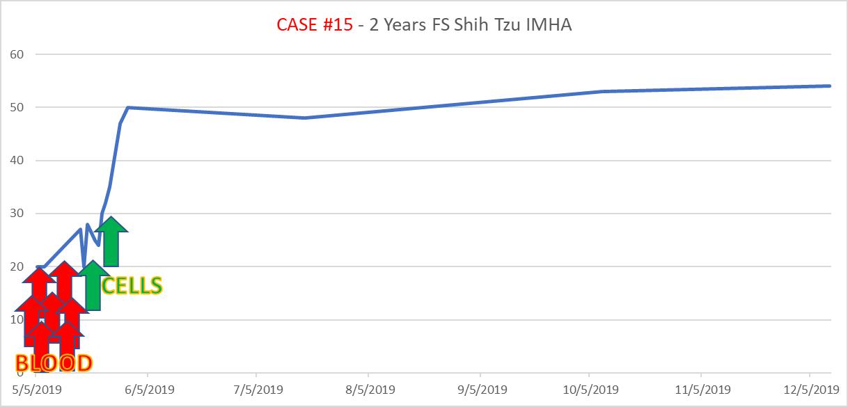 case15 2-year-old, female spayed Shih Tzu